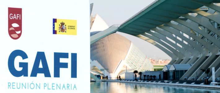 FATF Annual Report 2016-2017 (Spanish Presidency)